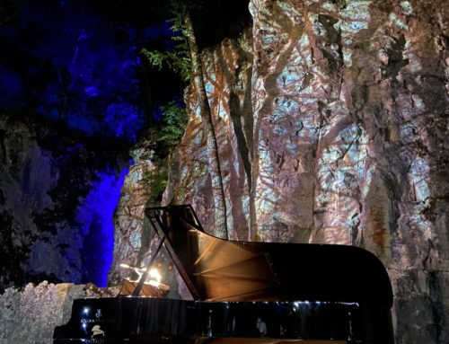 Image sonore 18 juillet 2020 – Théatre des Roches à Alesia : un concert magique !